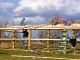 New Sheep barn going up (2011)