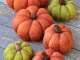 Needle Felted Pumpkins by Teresa Perleberg