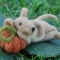 laying-down-mouse-with-pumpkin