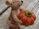 mouse-with-pumpkin