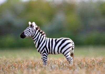 Needle Felted Zebra by Teresa Perleberg